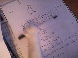 cat interrupts studying